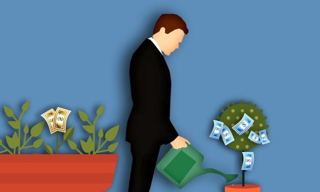 Irrtümer über nachhaltige Geldanlagen stark verbreitet